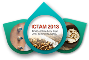 ICTAM VIII
